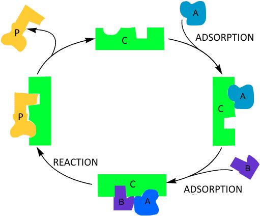 La catalyse hétérogène