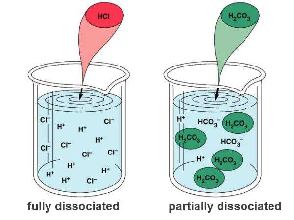 ions and acids
